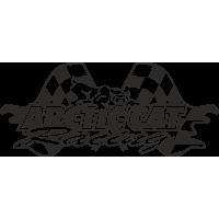 Sticker Arctic Cat Racing