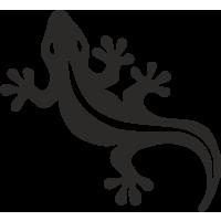 Sticker salamandre 1