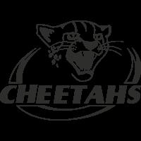 Sticker Rugby Logo Cheetahs