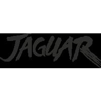 Sticker Jaguar Griffe