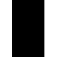 Sticker Guitare / Basse Logo GUILD