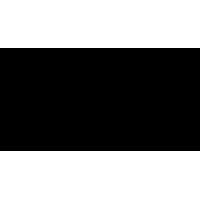 Sticker Guitare / Basse Logo Hofner