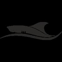 Sticker Requin 6 Bateau