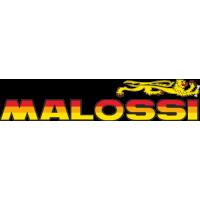 Sticker MALOSSI Couleur