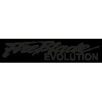 Sticker HONDA_FIREBLADE_EVOLUTION