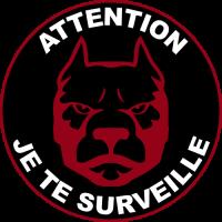 Sticker Attention au chien surveillance