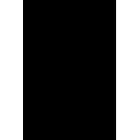 Sticker Punisher 17