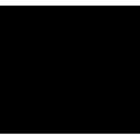 Sticker Thrasher logo