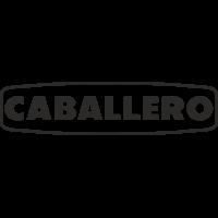 Sticker Logo Fantic Caballero 2