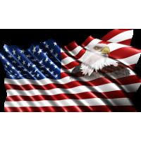 Autocollant Drapeau Américain Aigle 1
