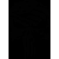 Sticker Punisher 5