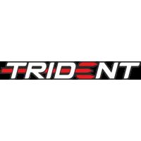 Sticker TRIUMPH TRIDENT(2)