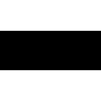 Sticker Guitare / Basse Logo Washburn 2