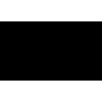 Sticker Guitare / Basse Logo Seagull