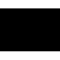 Sticker Guitare / Basse Logo Gibson 2