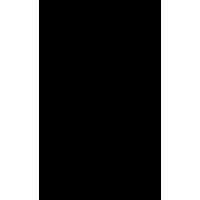 Sticker Punisher 19