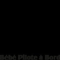 Sticker Bébé à Bord Pilote à Bord