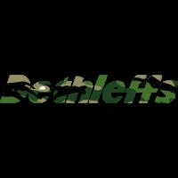 Sticker DETHLEFFS Military