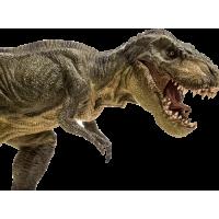 Sticker Dinosaure T Rex