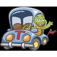 Autocollant Enfant Tortue Voiture
