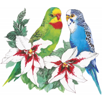 Autocollants Fleur Perroquets Tropical