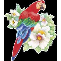 Autocollants Fleur Perroquet Tropical