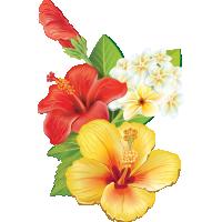 Autocollants Fleur Tropical 7