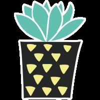 Autocollant Plante Et Cactus 9
