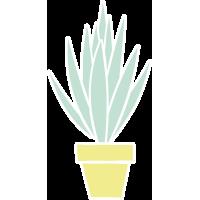 Autocollant Plante Et Cactus 13