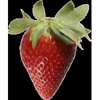 Autocollant Fruits et legumes Fraise