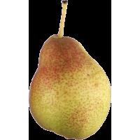 Autocollant Fruits et legumes Poire