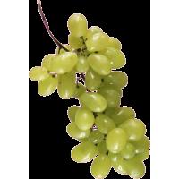 Autocollant Fruits et legumes Raisins