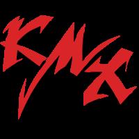 Sticker KAWASAKI Ninja KMX Couleur