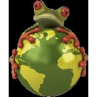 Autocollant Grenouille Monde