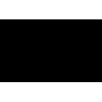 Sticker Guitare / Basse Logo Gibson