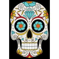 Calavera - Tete De Mort Mexicaine 14
