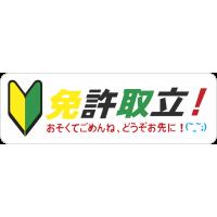 Jdm Japonese