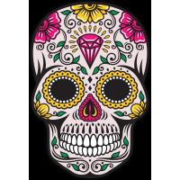 Calavera - Tete De Mort Mexicaine 66