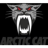 Autocollant Arctic Cat 2
