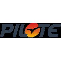 Autocollant Pilote Logo Dégradé