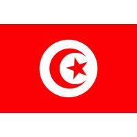 Autocollant Drapeau Tunisie