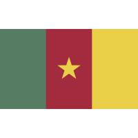 Autocollant Drapeau Cameroon