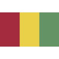 Autocollant Drapeau Guinée