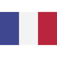 Autocollant Drapeau France 1