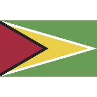 Autocollant Drapeau Guyane
