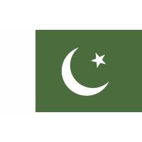 Autocollant Drapeau Pakistan
