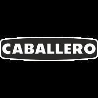 Sticker Logo Fantic Caballero