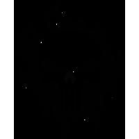 Sticker Punisher 7