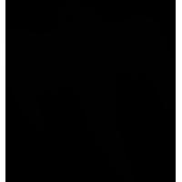 Sticker KOENIGSEGG Fantôme