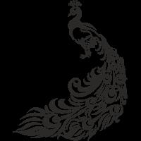 Sticker Muraux Paon